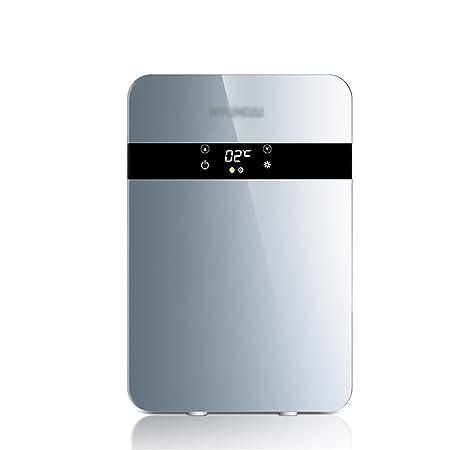 20L 12V DC 220V AC Refrigeración de dos núcleos Refrigerador de ...