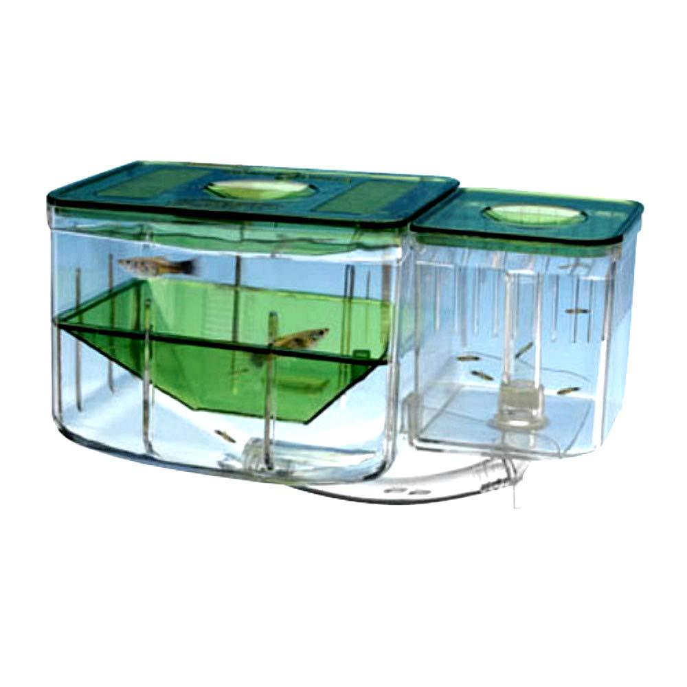 Fish Hatchery Box Aquarium Aqua Nursery Practical Design Provides Safety & Health for Baby Fishes - Skroutz Deals