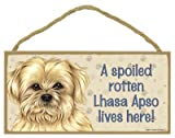 (SJT61944) A spoiled rotten Lhasa Apso lives here wood sign plaque 5