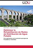 Optimizar la Rehabilitación de Redes de Distribución de Agua Potable, David Zamora and Mauricio González, 3848474395