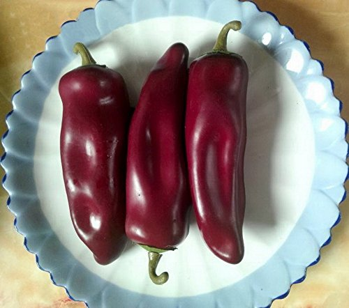 Gresorth 10pcs Artificial Lifelike Simulation Chili Fake Pepper Vegetable (Yellow, Red, Wine Red, Green, Dark Red) Each Color 2PCS by Gresorth (Image #1)