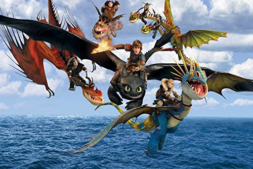 (Fit You How To Train Your Dragon 2 Movie Silk Poster Art Print Home Bedroom Decor 11)