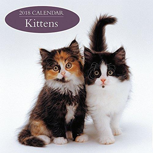 2018 Calendar: Kittens