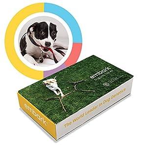 embark veterinary dog dna test kit over 160 health test pet supplies. Black Bedroom Furniture Sets. Home Design Ideas