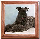 Kerry Blue Terrier Tile Trivet