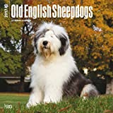 Old English Sheepdogs Dogs Wall Calendar 2018 {jg} Best Holiday Gift Ideas - Great for mom, dad, sister, brother, grandparents, , grandchildren, grandma, gay, lgbtq.