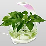 LED Indoor Garden Kit Plant Grow Light, Fish Tank Design with Sensitive Touch Control, Auto-Timer Function for Bedroom, Kitchen, Office