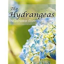 Hydrangeas - The Complete Guide