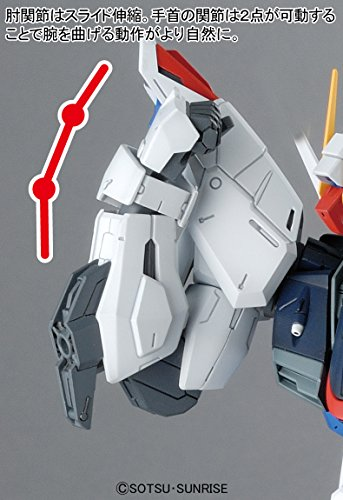 Bandai Hobby MG Freedom Gundam Version 2.0