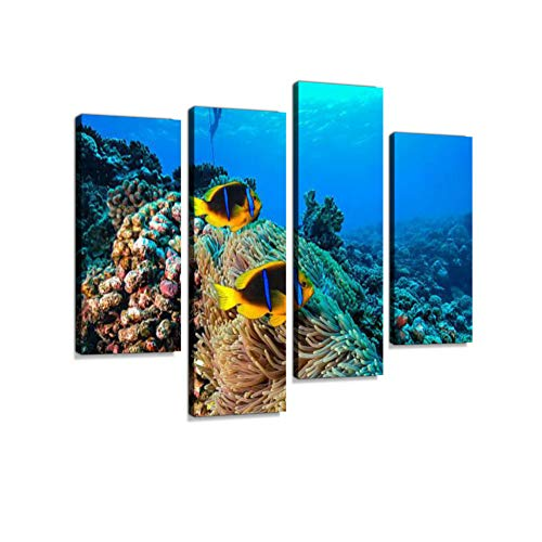 (Coral Reef in French Polynesia Canvas Wall Art Hanging Paintings Modern Artwork Abstract Picture Prints Home Decoration Gift Unique Designed Framed 4 Panel)