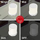 Macally LED Desk, Nightstand & Bedside Lamp with