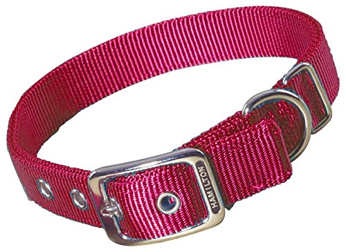 - Hamilton Double Thick Nylon Deluxe Dog Collar, 1 by 20-Inch, Raspberry