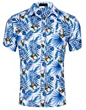 Cyparissus Men's Casual Button Down Shirt Cotton Hawaiian Shirt for Beach (L, Blue White Coconut Palm)
