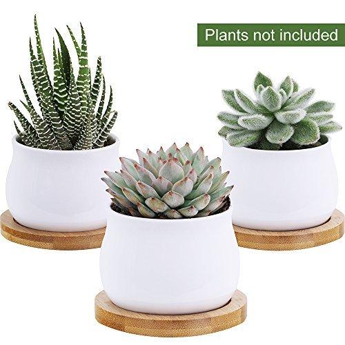 Winlyn 3 Piece Mini White Ceramic Succulent Planter Pot Cactus Plant Pot Set with Bamboo Bases