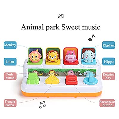 YMDLY Toys Animal Park Interactive Pop Up Music Toy,Up- Early Education Activity Center Toy, Ages 12 Months and up Toddlers.: Toys & Games