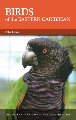 Birds of the Eastern Caribbean (Caribbean Pocket Natural History)