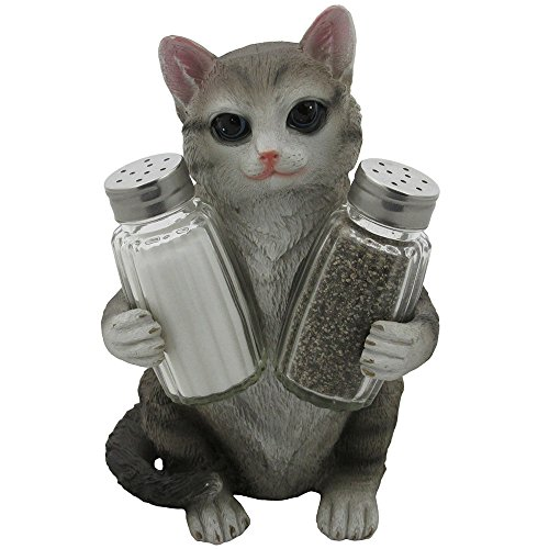 salt and pepper cat - 1