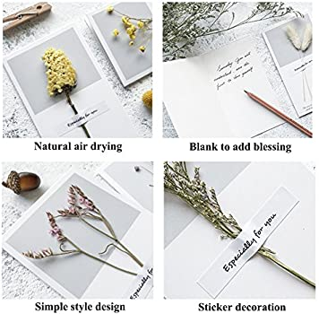 Greeting Cards Assortment Blank Thank You Card Dry Flower 10pcs Wish Cards for Wedding Birthday Note