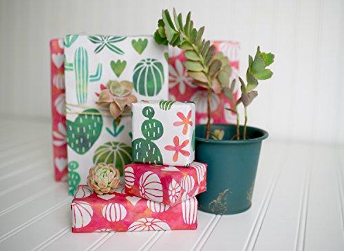 Designer Wrapping Paper: Amazon.com
