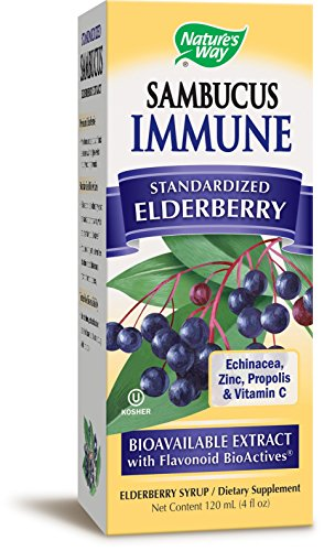 Echinacea Elderberry Herbal Syrup (Nature's Way Sambucus, Bio-Certified Elderberry, Immune Syrup, 4 Ounce)