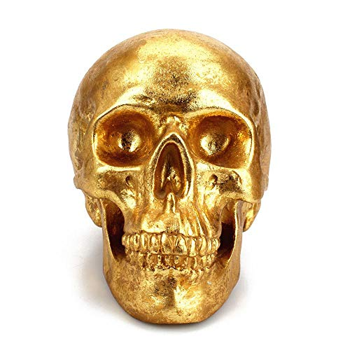 Aolvo Skull Replica Piggy Bank for Boys, Gold Grinning Skull Coin Bank, Eco-Friendly Resin Skull Ornament Money Box, Skull Figurines Piggy Bank, Medieval Decorations for Halloween Home Bar ()