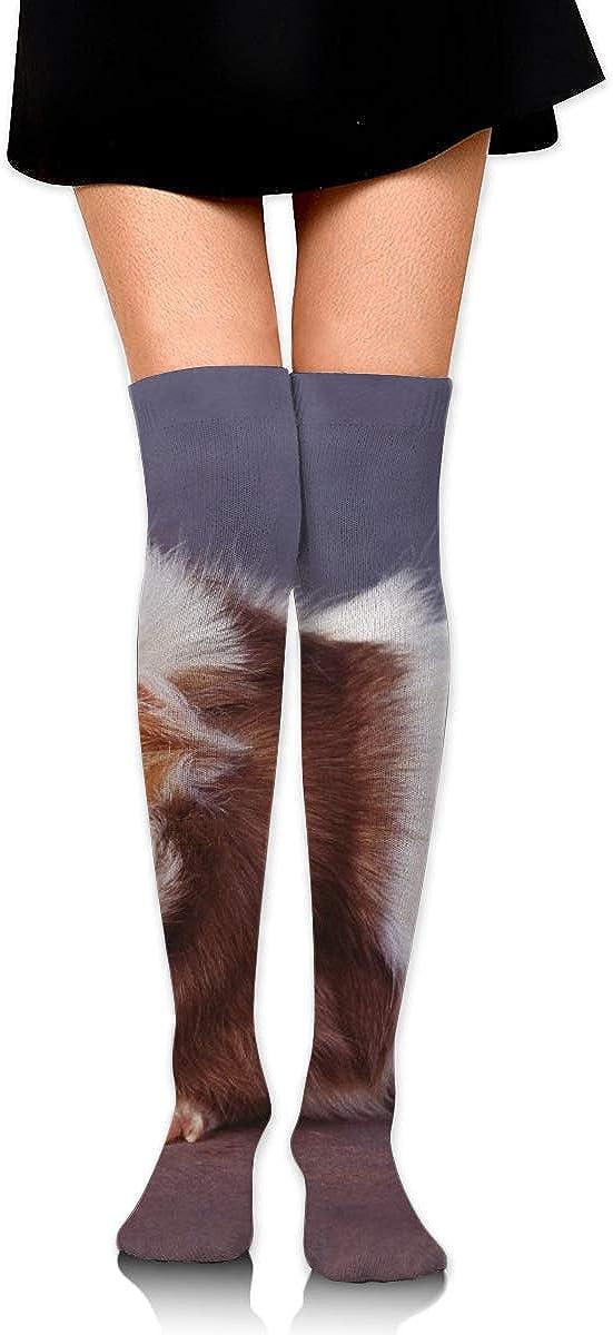 Kjaoi Girl Skirt Socks Uniform Hair Hamster Women Tube Socks Compression Socks