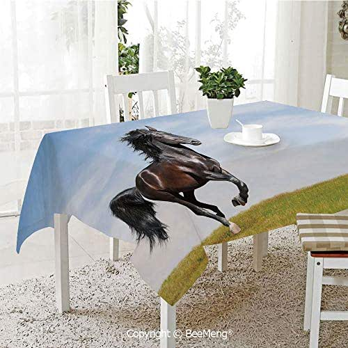 Large dustproof Waterproof Tablecloth,Black Kladruby Horse Rearing Up Freedom Cheerful Sunny Summer Day,Light Blue Black Green70 x 104 inches