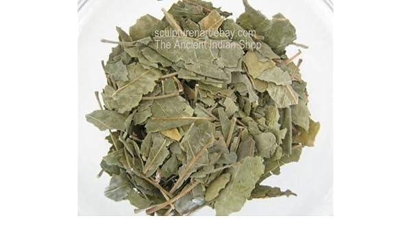 Bealpatra Leaves Aegle Marmelos Indian Raw & Whole Herbs 100 GM (3 5 oz)