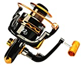 Jieshkouon Spinning Fishing Reel 12BB Bearing Zinc Alloy Gear Gapless Design 1000 to 6000 Series Left/Right Interchangeable Spinning Reels Saltwater Freshwater Fishing