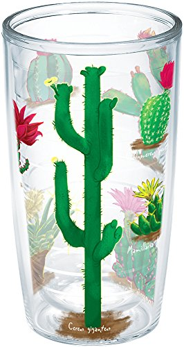 Tervis 1183447 Cactus of The Desert Insulated Tumbler with Wrap, 16oz, Clear