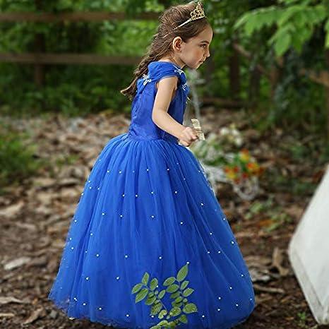 Amazon.com: Disfraz de Cenicienta para Niñas, vestido de ...