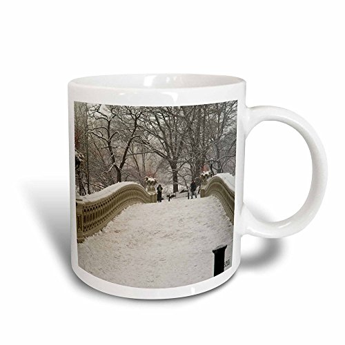 (3dRose 10313_3 Snow Blizzard In Central Park Manhattan New York City - Magic Transforming Mug, 11 oz, Multicolored )