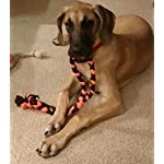 51kqGY Dq1L. SS150  - Tug of War Dog Chew Toy Made in The USA