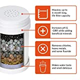 pH PURIFY Multi-Stage Faucet Water Filter – Water Filter Faucet System – Filters Chlorine, Fluoride & Chemicals – Increases pH & -ORP – Easy Installation