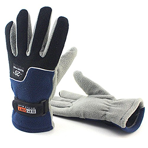 Toasis Winter Outdoor Sport Fleece Gloves for Man and Women (Blue for (Lady Fleece Glove)