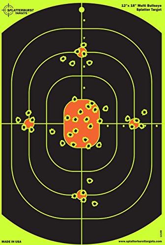 12 x 18 target - 7