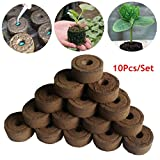 Katoot@ Garden 45mm Nursery Block 10Pcs/Set Peat Pellets Seeds Starter Seedling Soil Block Transplant Farmland Garden Tools Accessories