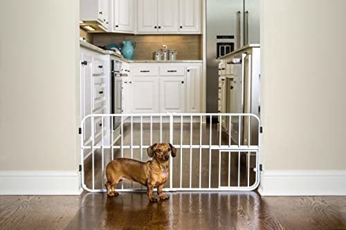 Carlson Pet Products Lil Tuffy Expandable Gate with Small Pet Door