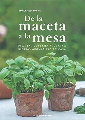 De La Maceta A La Mesa: Planta, cosecha y cocina hierbas ...