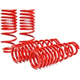 Skunk2 519-05-1550 Lowering Spring for Honda Civic