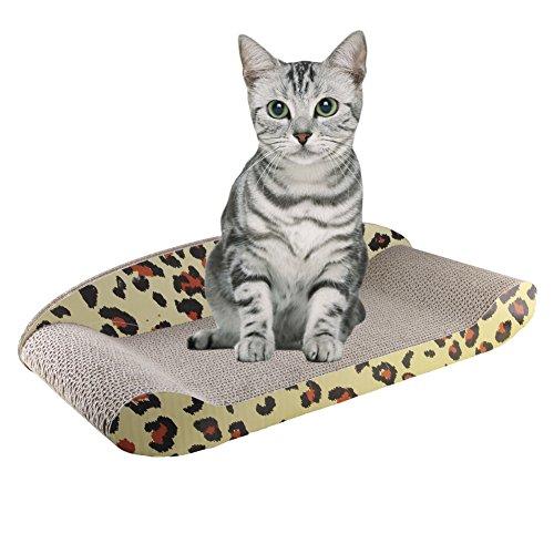 kitten products australia