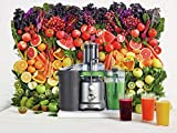 Breville BJE430SIL Juice Fountain Cold Centrifugal
