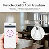 Oittm Smart Light Socket Wi-Fi Lights Bulb Adapter Base Converter E26 Lamp Holder Works with Alexa and Google Assistant, No Hub Required, App Control from Anywhere