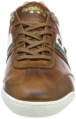 Uomo Tortoise Shell Sneaker Low d'Oro Romagna Imola Marrone Pantofola gBawqzxB