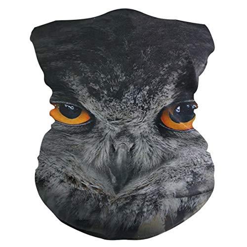 SLHFPX Owl Evil Eyes Headband WoBandana Balaclava,Neck Warmer,Face Mask,Collars Aliceband