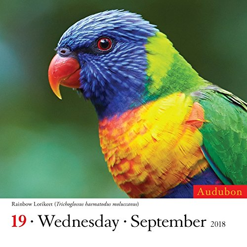 Audubon Birds 2018 Color Page-A-Day Calendar Photo #2