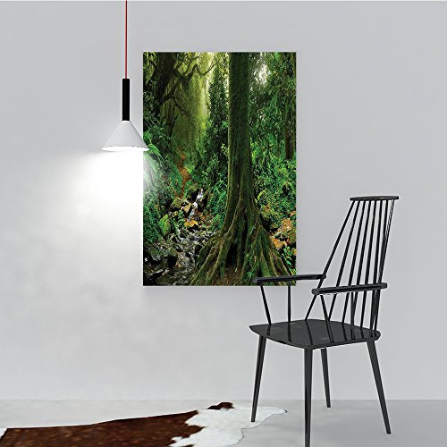 Philip C. Williams Decorative Painting Frameless Rain Forest with River in North Forest in Early Morning Humid Fog for Wall Decor W24 x H36 ()