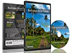 DVD Forest Combo Pack - Nature's Scenic Walks and Cycle Rides from Various Colorful Forest, Landscapes and National Parks - For Indoor Walking, Treadmill and Cycling Workouts