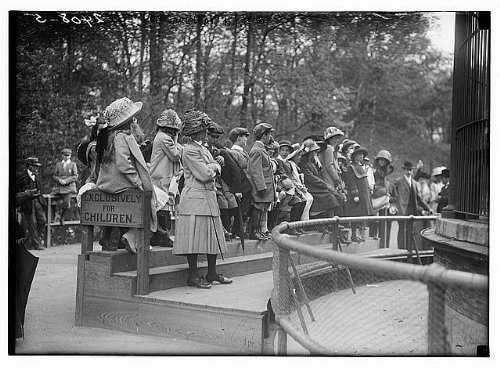 HistoricalFindings Photo: Children at N.Y. Zoo, York,1910-1915,Exclusively for Children sign (Sign York Zoo)