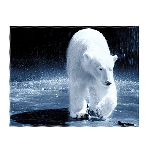 - QH 58 x 80 Inch Polar Bear Pattern Super Soft Throw Blanket for Bed Couch Sofa Lightweight Travelling Camping Throw Size for Kids Adults All Season